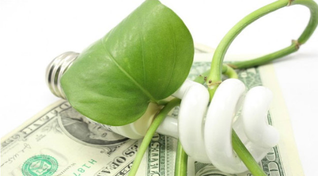 7 Ways to save money while going green