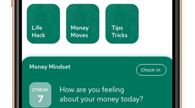 Financial Wellness Using a Money Tracking App